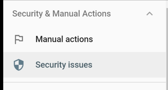 Security & Manual Actions